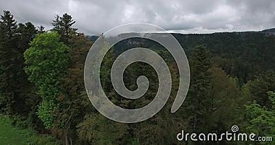 Над деревьями на Biaufond сток-видео