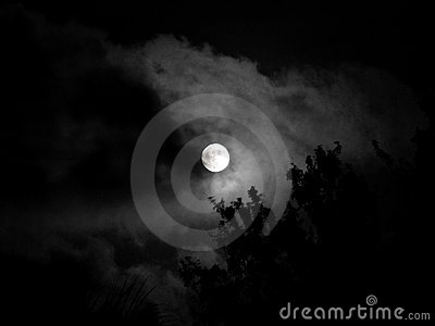 ноча луны красотки