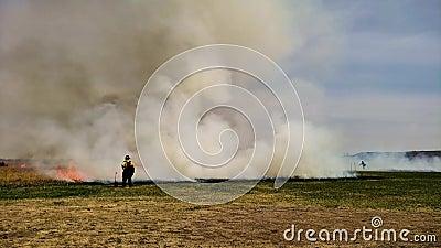 Огонь травы предписал ожог для восстановления прерии с пожарным в переднем плане видеоматериал