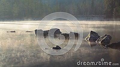 озеро и туман утра после восхода солнца сток-видео