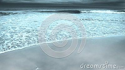 Океанский берег видеоматериал