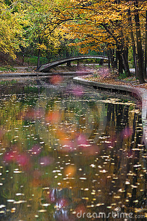 осеннее река парка