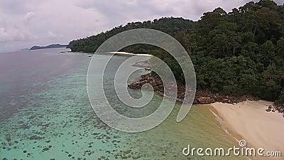 Остров & лес видеоматериал