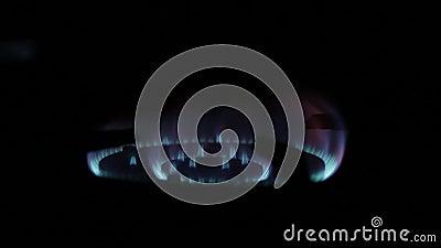 Открытый огонь от газовой плиты видеоматериал