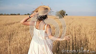 Отслеживающ отснятый видеоматериал красивой девушки в белом лете оденьте и соломенная шляпа бежать свободно пшеничным полем Взгля акции видеоматериалы