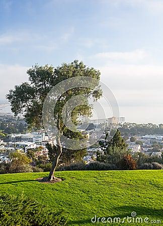 Панорама Вентуры от парка Grant