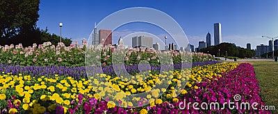 Парк Grant Редакционное Фото