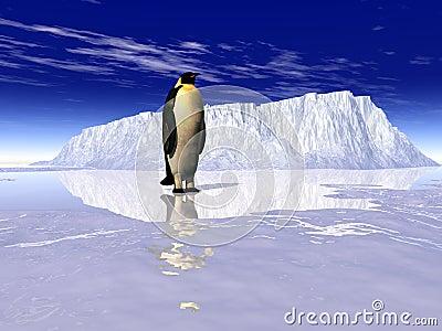 Пингвины 1