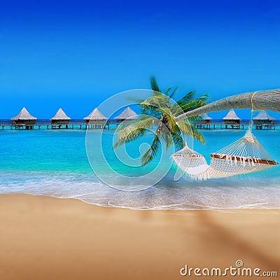 пляж тропический