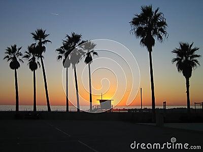 пляж venice