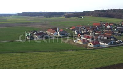 Поголовье и молочные фермы в небольшой деревне в Европе, Levanjci, графстве Destrnik в Словении видеоматериал