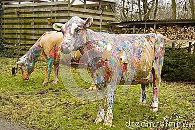 покрашенные коровы