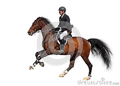 полная скорость gallop
