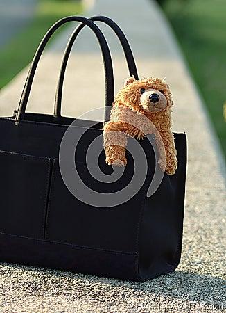 портмоне медведя