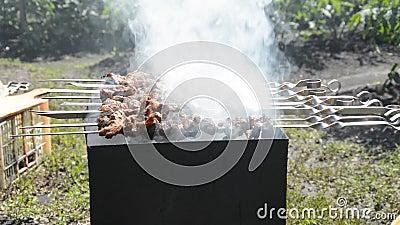 Подготавливать вкусное барбекю мяса на протыкальниках сток-видео