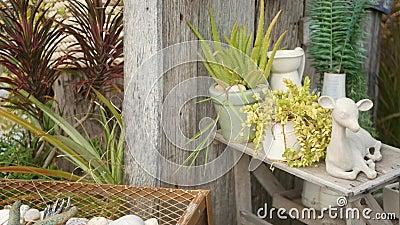Прекрасный декор ретро и растения для сада Набор ваз и керамических фигур в стиле винтажа для украшения двора акции видеоматериалы