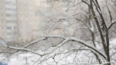 Прекрасный зимний пейзаж Снег падает на фоне размытого дома Закрытие снежков Холодно. видеоматериал
