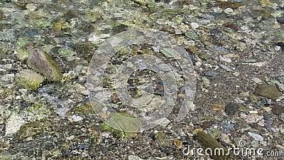 Пропускать потока Gerlos утесы в земле реки акции видеоматериалы