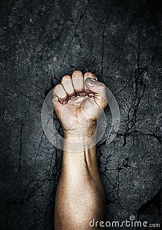 протест кулачка