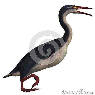 Птица Hesperornis на белизне