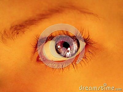 пурпуровый stare