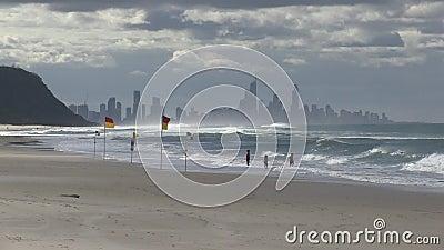 Плавающ между предохранителями жизни сигнализирует, рано утром, на Palm Beach, австралиец Gold Coast сток-видео