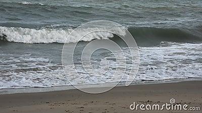 Развевайте в море на пляже Pae запрета сток-видео