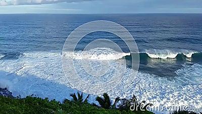 Разрушительный Сюрф Против Покрытых Пальмой Клиффов В Кауаи, Гавайи видеоматериал