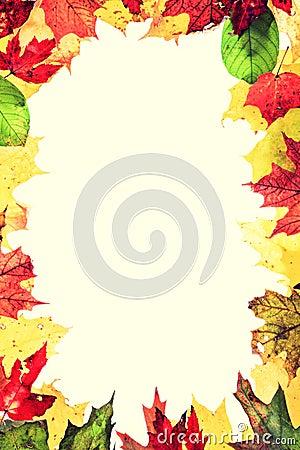 Рамка листьев осени