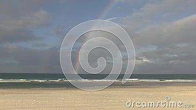 Радуга касаясь океану, Palm Beach, Gold Coast, Австралии сток-видео