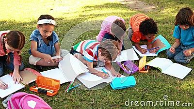 Ребеята школьного возраста делая домашнюю работу на траве сток-видео