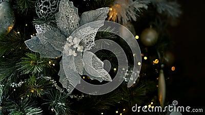 Рождественская ёлка размыла свет на заднем плане видеоматериал