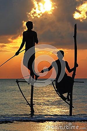 Рыболовы Sri Lanka