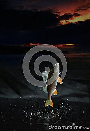 Рыбы скача вне