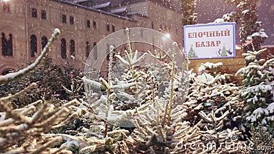Рынок рождественской елки на красной площади в Москве, России сток-видео