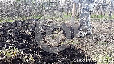 Садовник выкапывает сад Культивируйте почву сток-видео
