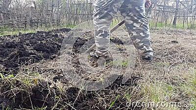 Садовник выкапывает сад Культивируйте почву акции видеоматериалы