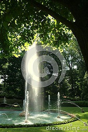 сад фонтана