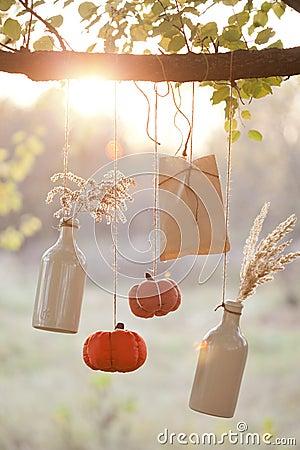 Сжатые тыквы украшают