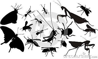 силуэты насекомых