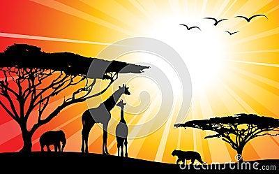 силуэты сафари Африки