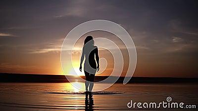 Силуэт худенькой девушки идя на воду делает пятна на поверхности Неимоверный заход солнца на заднем плане сток-видео