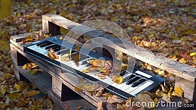 Синтезатор лежит в лесе на желтых листьях Желтые листья падают на синтезатор осенняя пуща акции видеоматериалы