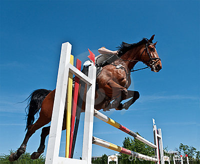 скакать лошади