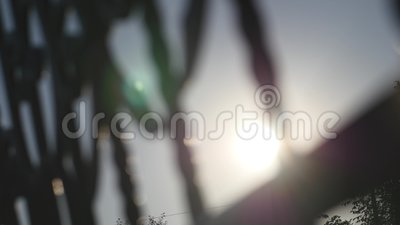 Слепимость Солнця через железный строб акции видеоматериалы