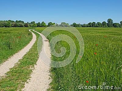 след сельской местности