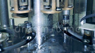 Современный механизм кладет крышки на бутылки с алкоголем Продукция вискиа, шотландская, коньяк видеоматериал