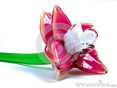 стекло цветка