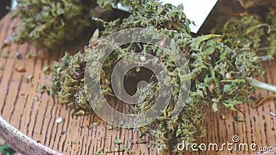 Марихуана видео ролики смолы марихуаны