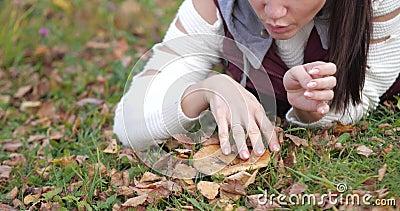 Счастливая девушка лежа в парке на траве Желтое листво сток-видео